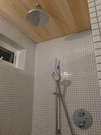 shower22